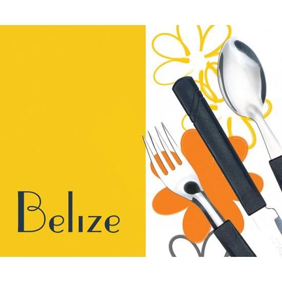 Комплект десертни лъжици BELIZE, 3 броя, оранжеви, SIMONAGGIO Бразилия