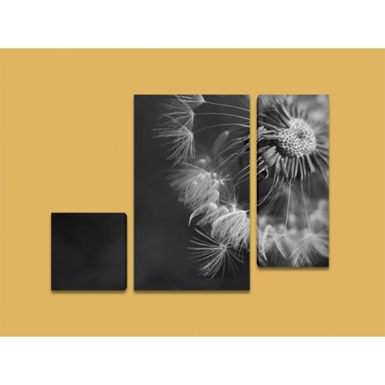 """Картина пано """"Глухарче в черно и бяло"""", 100 * 70 см"""