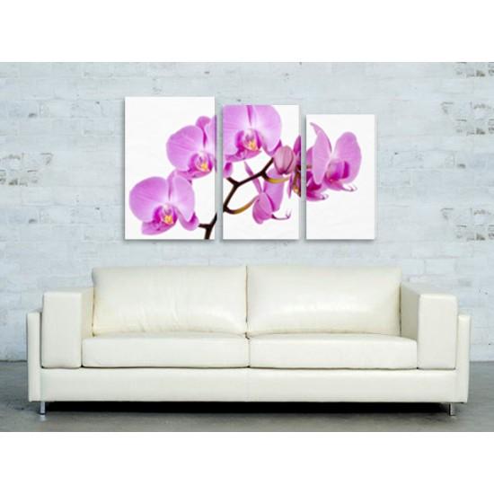 "Картина пано ""Орхидея"", 120 * 65 см"