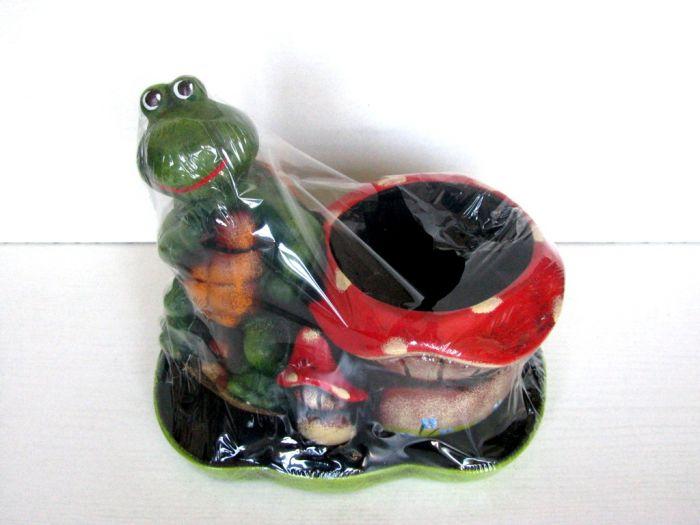 Саксия гъбка с костенурка