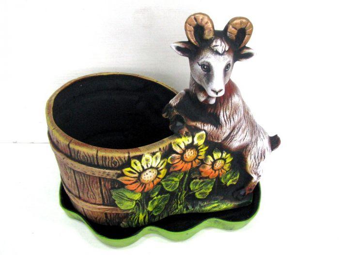 Саксия с козел, голяма
