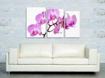 """Картина пано """"Орхидея"""", 120 * 65 см 6521 - Pochehli"""