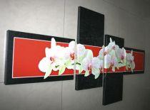 Пано за стена Орхидеи в черно и червено 6853 - Pochehli