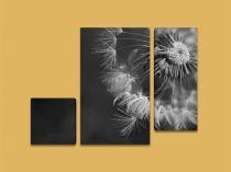 Картина Глухарче в черно и бяло 5059 - Pochehli