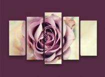 Картина разцъфнала роза, близък план 5742 - Pochehli