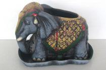 Саксия слон среден